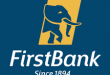 SMART MONEY WOMAN: FIRSTBANK PARTNERS ARESE UGWU, UNVEILS TV SERIES OF THE AWARD WINNING BOOK
